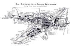 Blackburn Skua cutaway