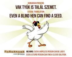 Vak tyúk is talál szemet ~ Even a blind hen can find a seed. But this is not something to be depended upon often. Funny Quotes, Funny Memes, Letter Symbols, Proverbs Quotes, World Languages, My Roots, Meant To Be, Clever, Writing