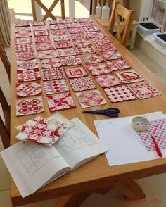 Nearly Insane Quilt blocks - Audit - cool blocks. Love the red and white but can you imagine the glory in green, white and orange! Or fifty shades of GREEN!