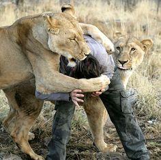 Animal behaviourist Kevin Richardson.