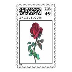 Red Rose Postage stamp