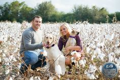 Dog engagement photos | Keith Wallace photography | cotton field photos | | cotton field pictures