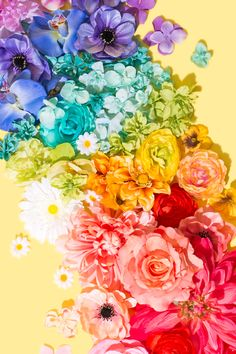 Here Comes Spring / Violet Tinder Studios - Trend Baby Rainbow 2020 Rainbow Wallpaper, Colorful Wallpaper, Flower Wallpaper, Wallpaper Backgrounds, Iphone Wallpaper, Rainbow Flowers, Rainbow Colors, Orange Pastel, Rainbow Aesthetic