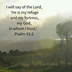 I will say of the Lord , 'He is my refuge and my fortress, my God, in whom I trust.'  Psalm 91:2 NIVUK