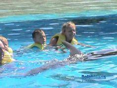 Riviera Maya Full Day VIP Program Video
