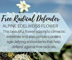 #willingbeauty #skincare #antioxidant #free-radical #followmytribe  https://m.facebook.com/loveginamartin/