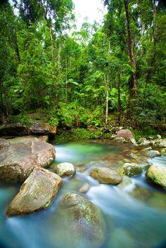 The ultimate road trip through tropical North Queensland [pics] | Matador Network