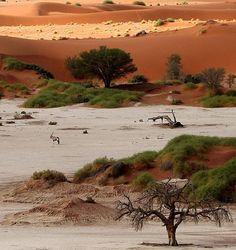 Looks like the Kalahari. Definitely Africa