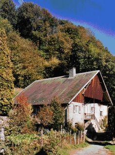 Guides du Patrimoine des Pays de Savoie - Saint Alban d'Hurtières. Savoie-Mont-Blanc/Maurienne/Saint-Alban-d-Hurtieres
