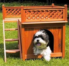 Indoor : Luxury Indoor Dog Houses Custom Dog House' Cheap Dog Houses For Sale' Dogs Houses plus Luxury Dog House' Fancy Dog Houses' Amazing Dog Houses also Pet Crate' Awesome Dog Houses' Indoor - Best Source of DIY Home Improvement Animal Room, Animal House, Wood Dog House, Small Dog House, Small Dogs, Big Dogs, Japanese Minimalist, Dog Bunk Beds, Luxury Dog House
