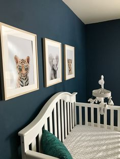 Nursery Reveal for Ezra: Dark Blue Nursery for baby boy The Effective Pictures We Offer You About boy nurseries orange A quality picture can tell you many things. Dark Nursery, Jungle Nursery Boy, Navy Blue Nursery, Nursery Room, Tribal Nursery, Boys Room Colors, Boy Nursery Colors, Boy Nursery Themes, Blue Nursery Ideas