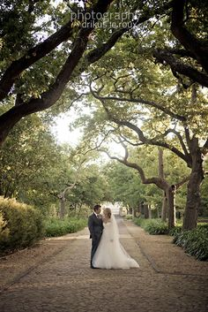 We end this week with Jon and Lauren's beautiful wedding. They said their i do's under the most beautiful flower arch at Nooitgedacht in Stellenbosch. We're loving how they went all out with the garden ceremony with the flowers and all the details. Wedding Venues, Wedding Photos, Wedding Inspiration, Wedding Ideas, Most Beautiful Flowers, Coral Pink, Holiday Destinations, Garden Wedding, Wedding Planning