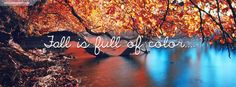 Fall Is Full of Color Tree Growing Into A Lake Facebook Cover Wallpaper