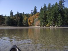 Autumn colours from the canoe. Autumn Colours, Sunshine Coast, Canoe, Healing, Peace, Outdoor, Outdoors, Outdoor Games, The Great Outdoors