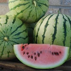 Watermelon Cris Cross Organic - This lb. fruit was once considered extinct. Bred for the Midwest, but adaptable to other climates, the oblong fruit ripens to a delightful dark pink flesh. Organic Gardening Tips, Vegetable Gardening, Pumpkin Squash, Squashes, Exotic Fruit, Delicious Fruit, Food Hacks, Food Tips, Garden Seeds