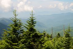 Let's take a vacation into the Smokies!