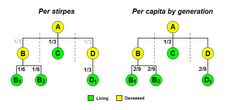 Difference between per stirpes and per capita