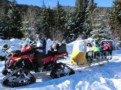 Romantische Schnee-Wildsafarie im 1. Wellness-Bauernhof Österreichs Wellness, Snow, Hiking
