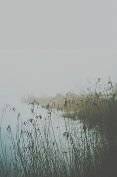 De pequeños solíamos ir a jugar al lago y los días de niebla imaginábamos que una forma prisionera del infierno emergía de las aguas y se apoderaba de nosotros.