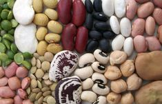 Purchasing: Buy beans from a busy market. Old beans will take longer to cook. Storing:Never store beans in their plastic bag. Bugs will eat through anything to get a meal. Adding a dried chili pepper in the beans helps keep bugs at bay. It is best to store beans in a glass or ceramic jar […]