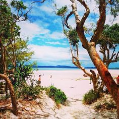 Whitsundays #Queensland #Australia     by queensland (instagram)