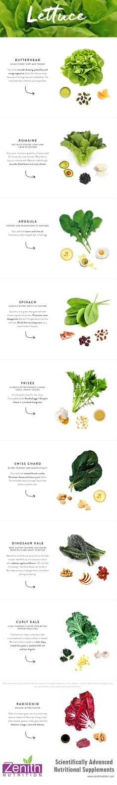 Lettuce - Butte head, Romaine, Arugula, Spinach, Frisee, Swiss Chard, Dinosaur kale, Curly Kale, Radicchio. Best supplements from Zenith Nutrition. Health Supplements. Nutritional Supplements. Health Infographics