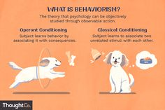 Behaviorism is the theory that psychology can be objectively studied through observable actions. Key figures include Pavlov, Skinner, and Watson. Social Work Exam, Psychology Notes, Psychological Theories, Operant Conditioning, Behavior Interventions, Third Grade Science, Physics Classroom, Forensic Anthropology, Developmental Psychology