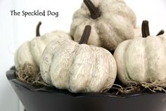 The Speckled Dog: DIY - Faux Antiqued Pumpkins