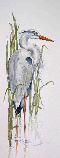 Great Blue Heron: #watercolorarts