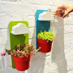 DETAILS - Cloudy Plant Pot is a thoughtful helper for your little plants. - You can pour water in any speed into the cloud part and it will drop the water on the plants like its drizzling. - A playful