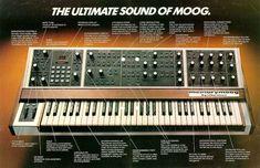Moog. The MemoryMoog
