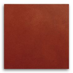 Edelman Leather floor/wall tiles in Smooth Rust FT06