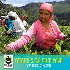 Join us on Twitter at 1pm PST today to celebrate Fair Trade Month and win prizes!    We'll be giving away Fair Trade Certified goodies like tote bags, t-shirts, and Honest Tea every 15 minutes during the hour. Register now to be eligible to win: http://ftmparty.eventbrite.com/