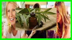 Aceite de Arbol de té y Aloe Vera para el Acne http://youtu.be/OJb2QEXrltg