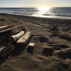 Maderas #beachwood #oceantreasures #fuerteventura