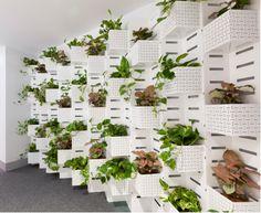 plantwall - Google 검색