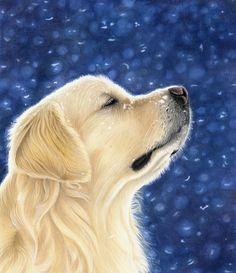 Golden Retriever Dog Portrait - Pet Portraits & Animal Art by UK Artist Donna | Dog Portraits Drawn & Painted by Commission