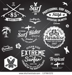Set of Summer | Surfing Design | Tropical vector set |Hand drawing silhouette | T-shirt Printing | Badge Applique Label