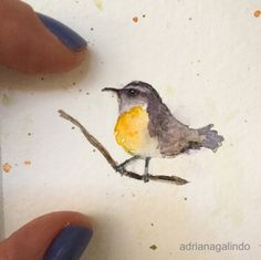 Little love, miniature watercolor / bird / Amor em miniatura, aquarela emoldurada , pássaro / Adriana Galindo - shop: drigalindo1@gmail.com