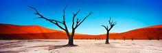 Spirit of the Desert: Sunrise over Deadvlei, one of the clay pans in the Sossusvlei region in Namibia's Namib Desert.