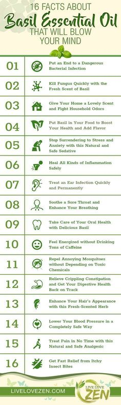 Basil Essential Oil Benefits Infographic #PatchouliEssentialOilblends #PatchouliEssentialOilbenefits