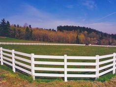 Rounded corners ensure that horses can't be blocked in by more aggressive herd mates, reducing the risk of injury that could occur during scuffles.
