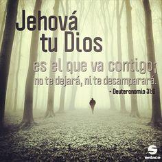 Jehová tu Dios es el que va contigo; no te dejará, ni te desamparará - Deuteronomio 31:6