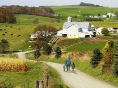 Virginia Amish--Photo of Amish Country, Ohio Tourist Attraction Photo