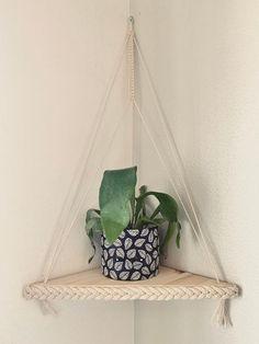 Plant Shelves, Hanging Shelves, Floating Shelves, Hanging Rope, Hanging Plants, Wood Swing, Corner Shelves, New Room, Plant Decor