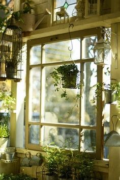 Use my old windows for my garden shed. I love this look, lots going on, but just gorgeous.