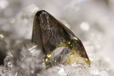 Anatase - Wannigletscher, Binntal, Wallis, Switzerland Size: 2.5mm