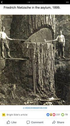 Loggers, Portland,1915