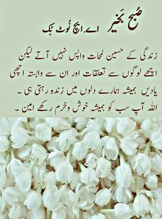 السلام عليكم ورحمة الله وبركاته - صُبح بَخیر _ اے.ایچ نُوٹ بُک _ Good Morning Msg, Good Morning Messages, Urdu Quotes, Birthday Quotes, Best Brand, Pray, Wisdom, Sayings, Words