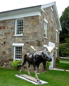 Fiberglass painted moose, Bennington, VT Bennington Vermont, Green Mountain, Us Travel, New England, Wander, Places Ive Been, To Go, Horses, Explore